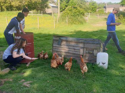 Jamie's Farm Residential Trip 1 - 8th to 11th June 2021